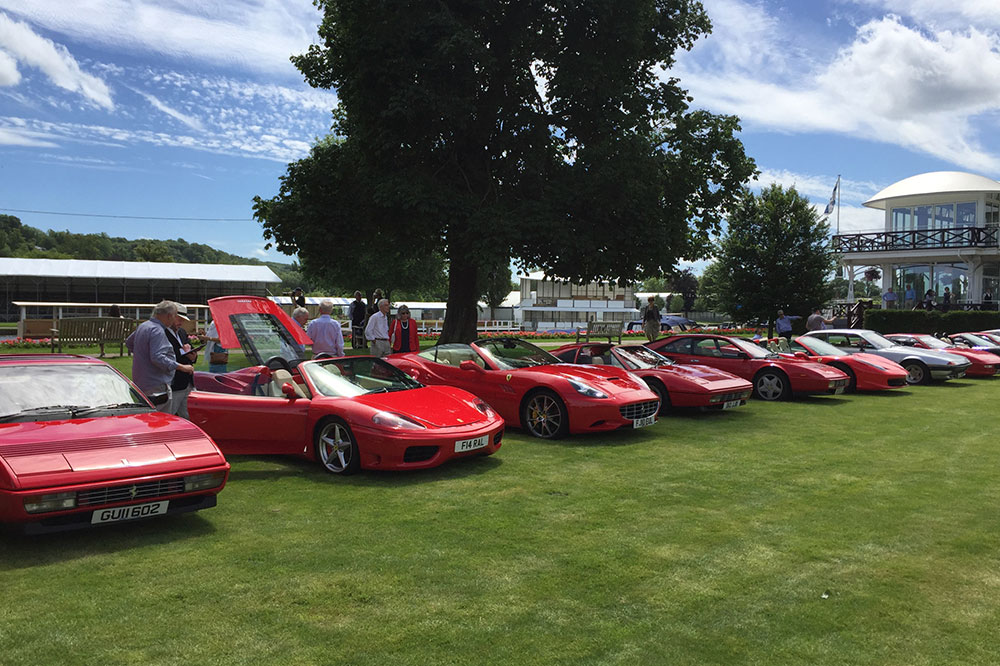 Ferrari Owners Club Display & Lunch